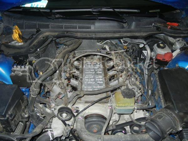 Ported/Modified intake VS Stock Manifold PICS :) | Pontiac